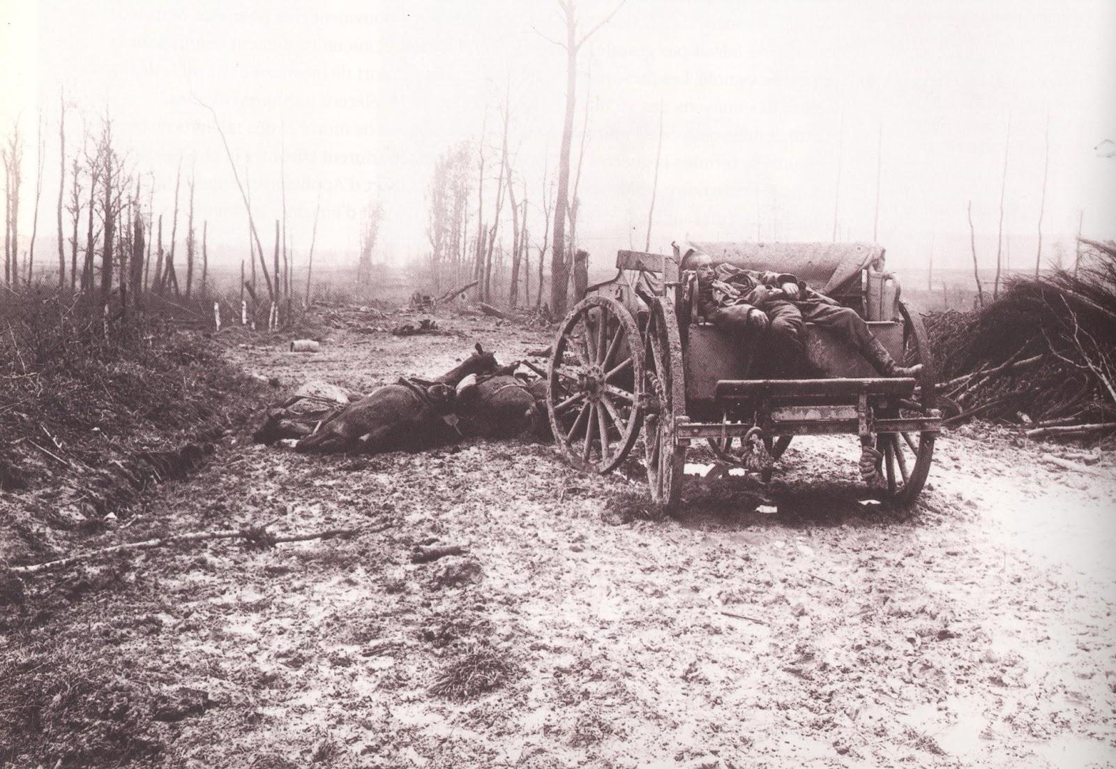 Caisson et chevaux Artillerie explosés
